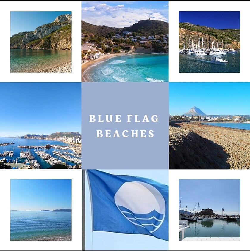 Die Blauen Flaggen